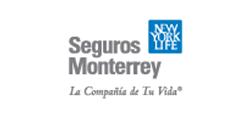 seguros-monterrey_marca